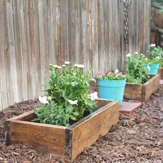DIY Budget Flower Boxes